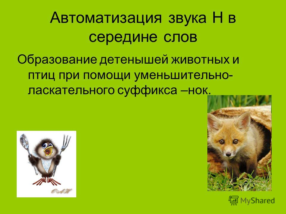 Автоматизация звука Н в середине слов Образование детенышей животных и птиц при помощи уменьшительно- ласкательного суффикса –нок.