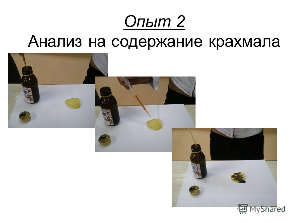 Опыт 1 Анализ на содержание масла