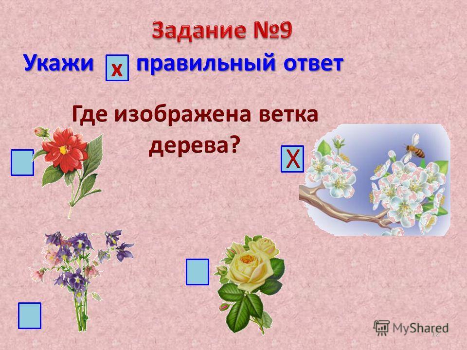 Укажи правильный ответ х 12
