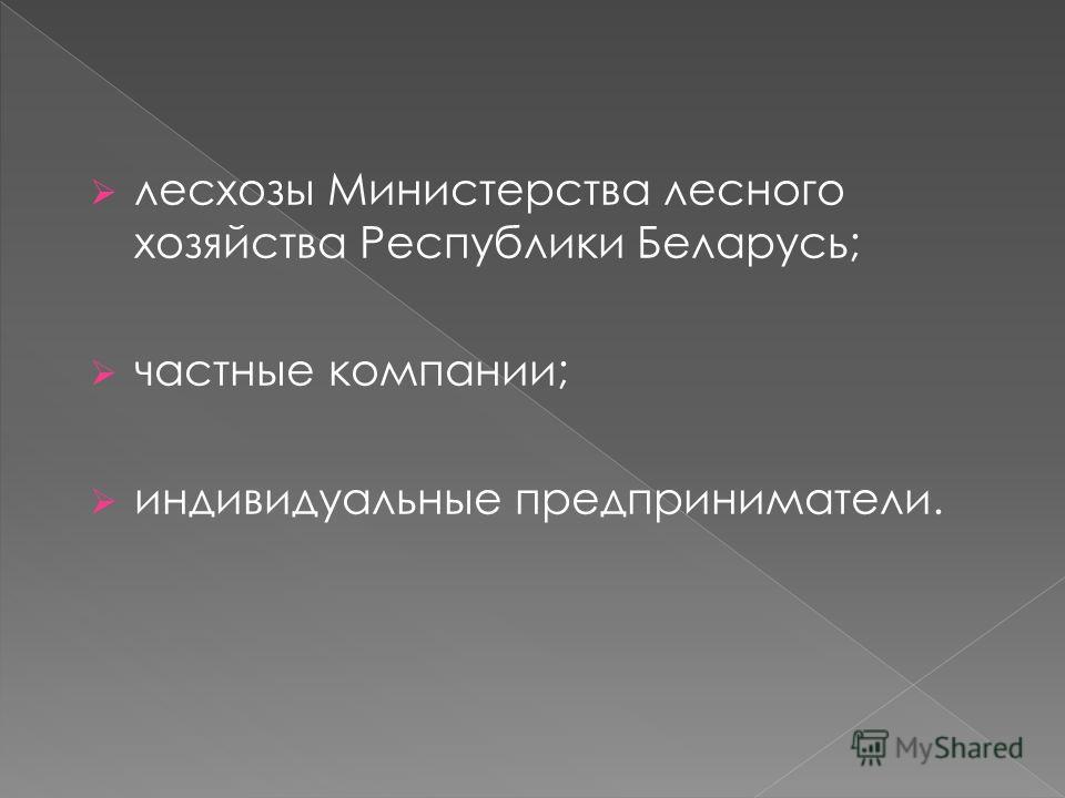 лесхозы Министерства лесного хозяйства Республики Беларусь; частные компании; индивидуальные предприниматели.