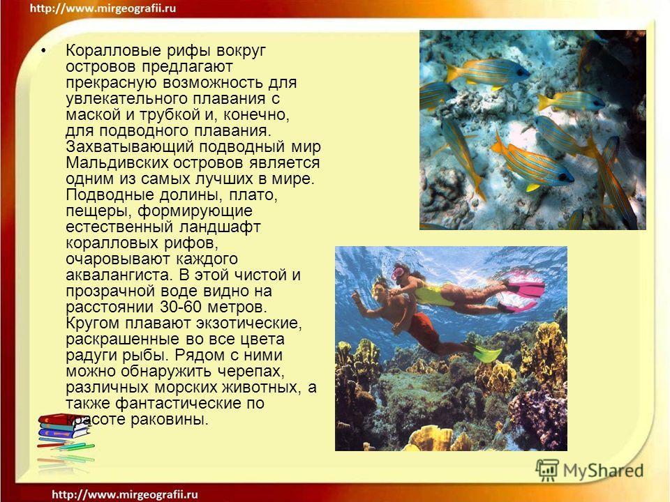 Коралловые рифы вокруг островов предлагают прекрасную возможность для увлекательного плавания с маской и трубкой и, конечно, для подводного плавания. Захватывающий подводный мир Мальдивских островов является одним из самых лучших в мире. Подводные до