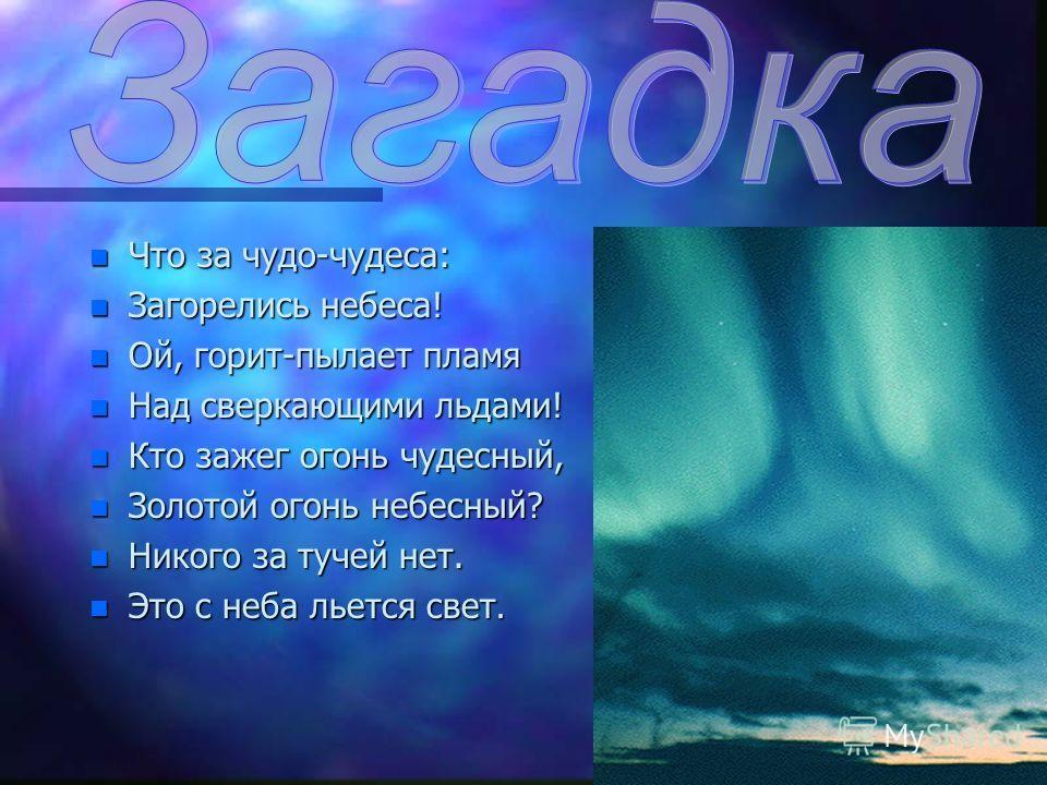 n Царство снега и льда. n Растительный мир. n Животный мир. n Белые медведи. n Человек в Арктике. n Внимание! n Заповедник. n Наши предложения.