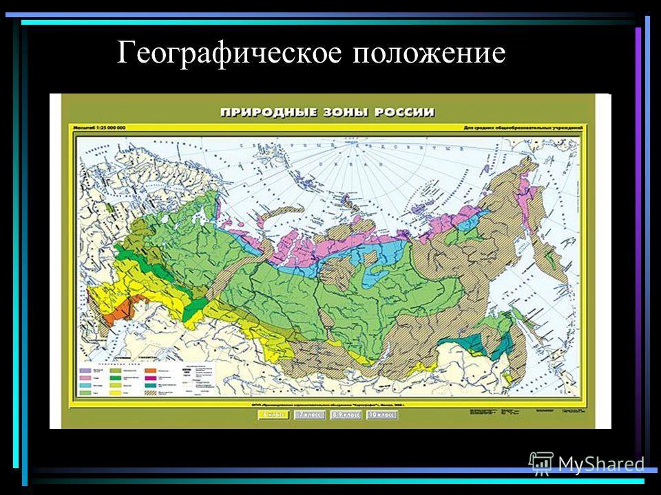 Презентация На Тему Арктические Пустыни 8 Класс Скачать