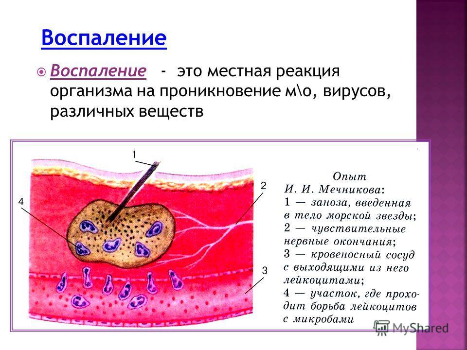 Воспаление - это местная реакция организма на проникновение м\о, вирусов, различных веществ