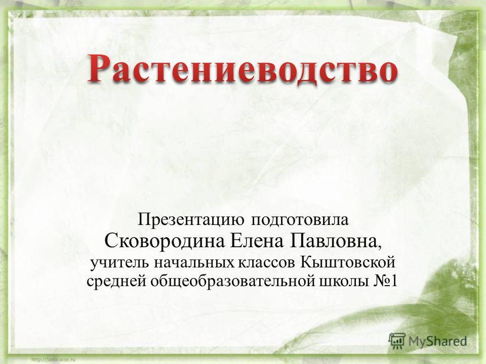 Презентацию подготовила Сковородина Елена Павловна, учитель начальных классов Кыштовской средней общеобразовательной школы 1