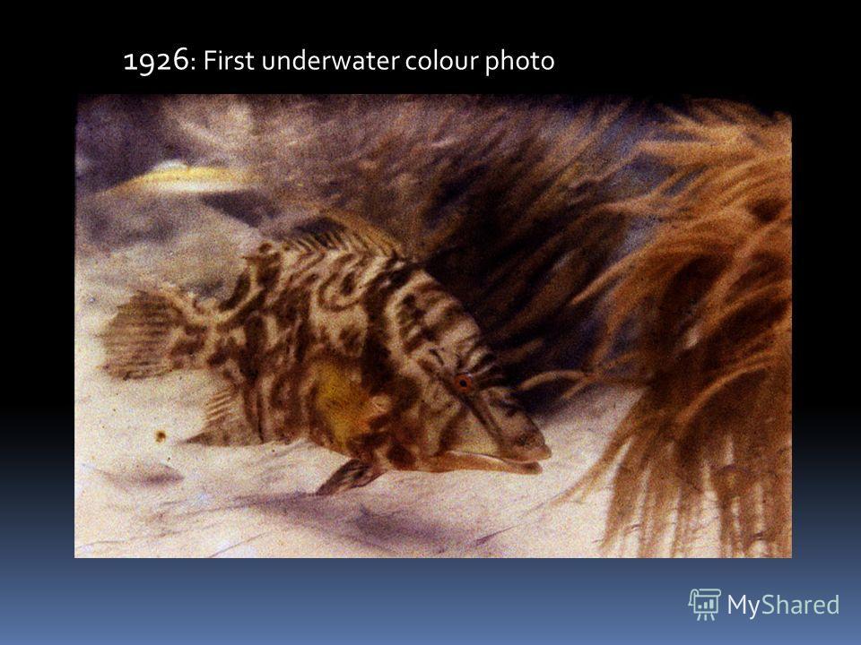 1926 : First underwater colour photo