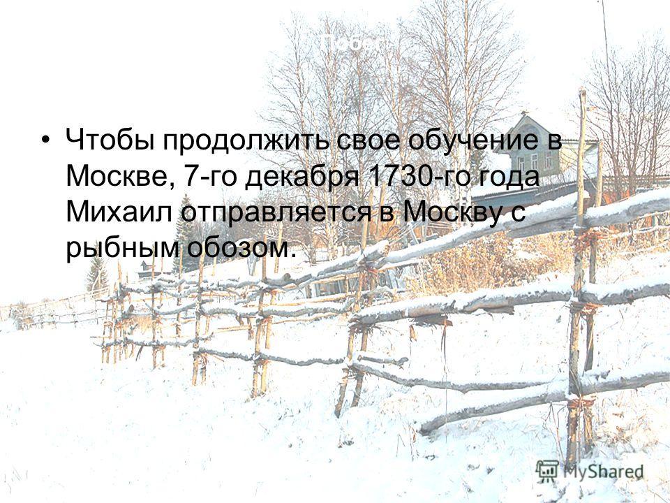 Побег Чтобы продолжить свое обучение в Москве, 7-го декабря 1730-го года Михаил отправляется в Москву с рыбным обозом.