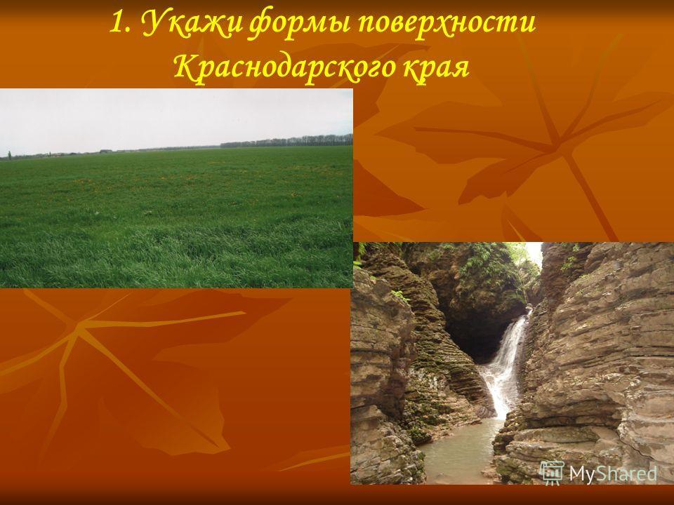 1. Укажи формы поверхности Краснодарского края