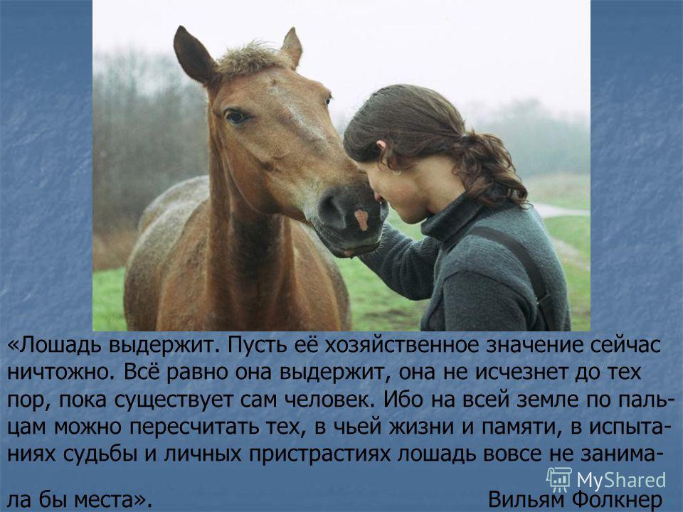 «Лошадь выдержит. Пусть её хозяйственное значение сейчас ничтожно. Всё равно она выдержит, она не исчезнет до тех пор, пока существует сам человек. Ибо на всей земле по паль- цам можно пересчитать тех, в чьей жизни и памяти, в испыта- ниях судьбы и л