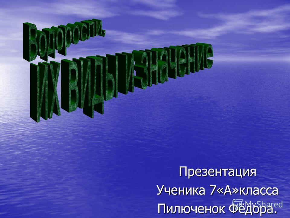 Презентация Ученика 7«А»класса Пилюченок Фёдора.
