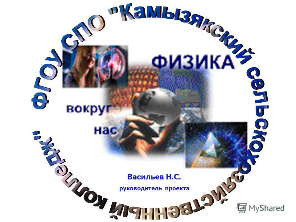 Васильев Н.С. руководитель проекта