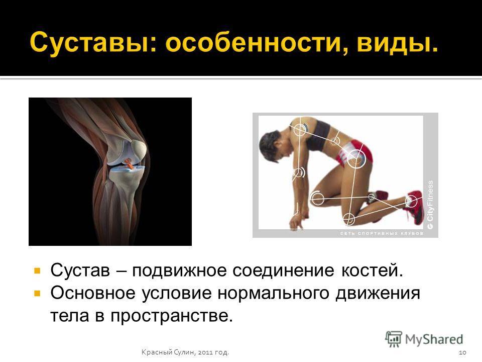 10 Сустав – подвижное соединение костей. Основное условие нормального движения тела в пространстве.