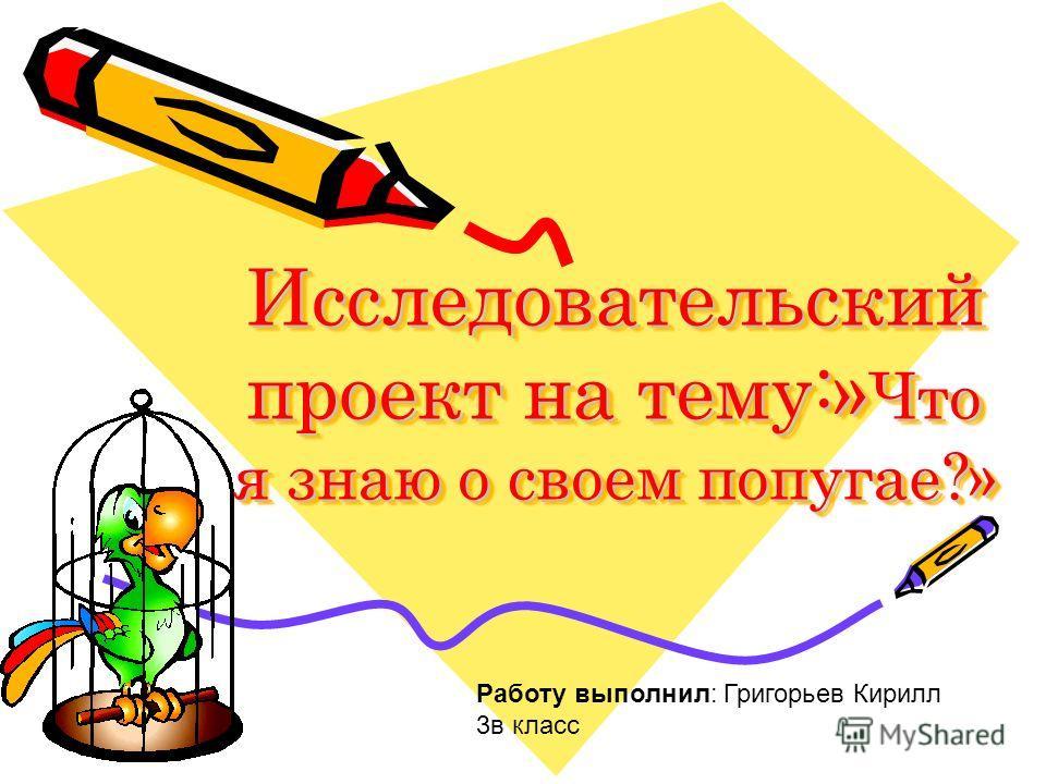 Исследовательский проект на тему:» Что я знаю о своем попугае?» Работу выполнил: Григорьев Кирилл 3в класс