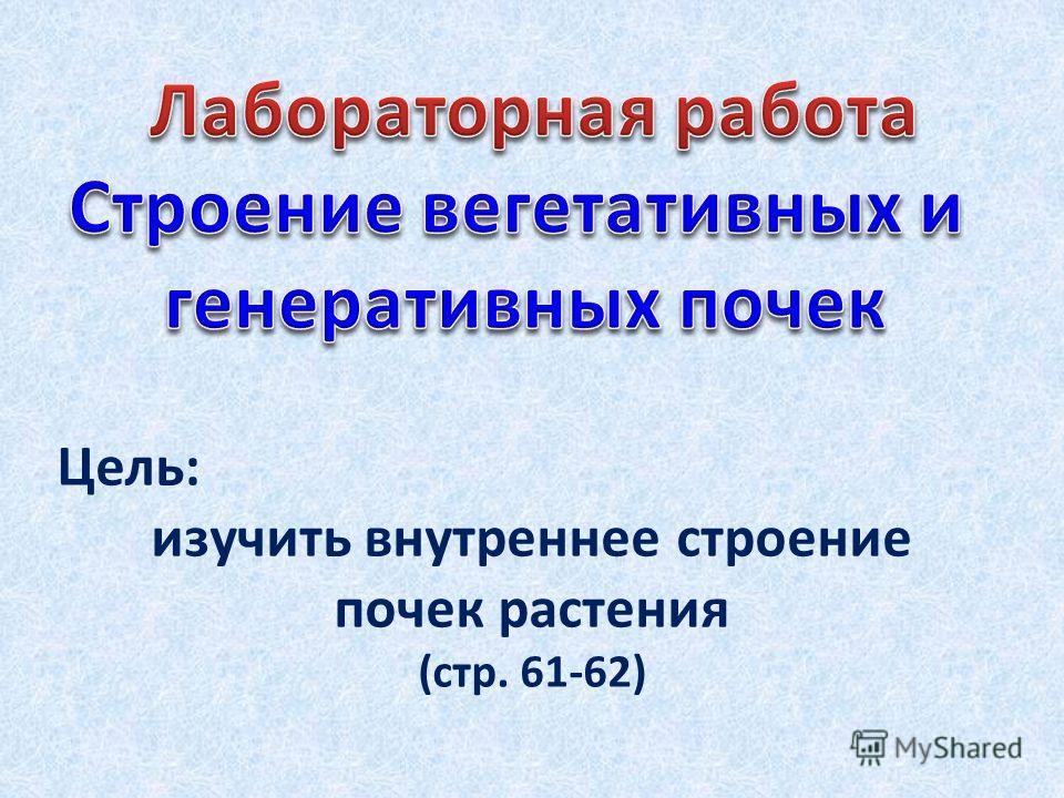 Цель: изучить внутреннее строение почек растения (стр. 61-62)