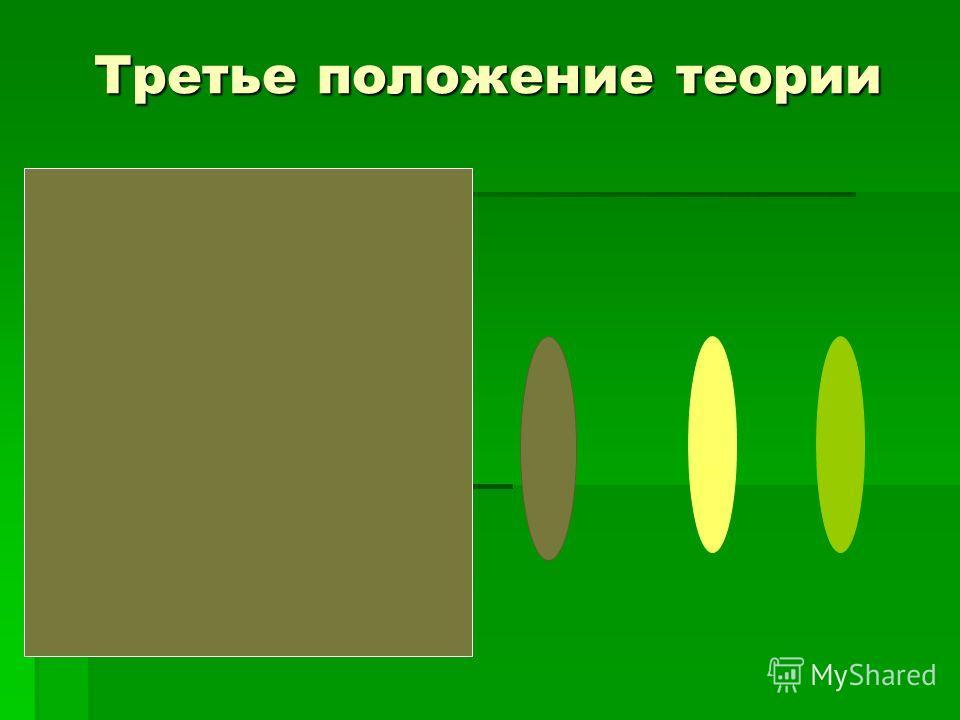Третье положение теории