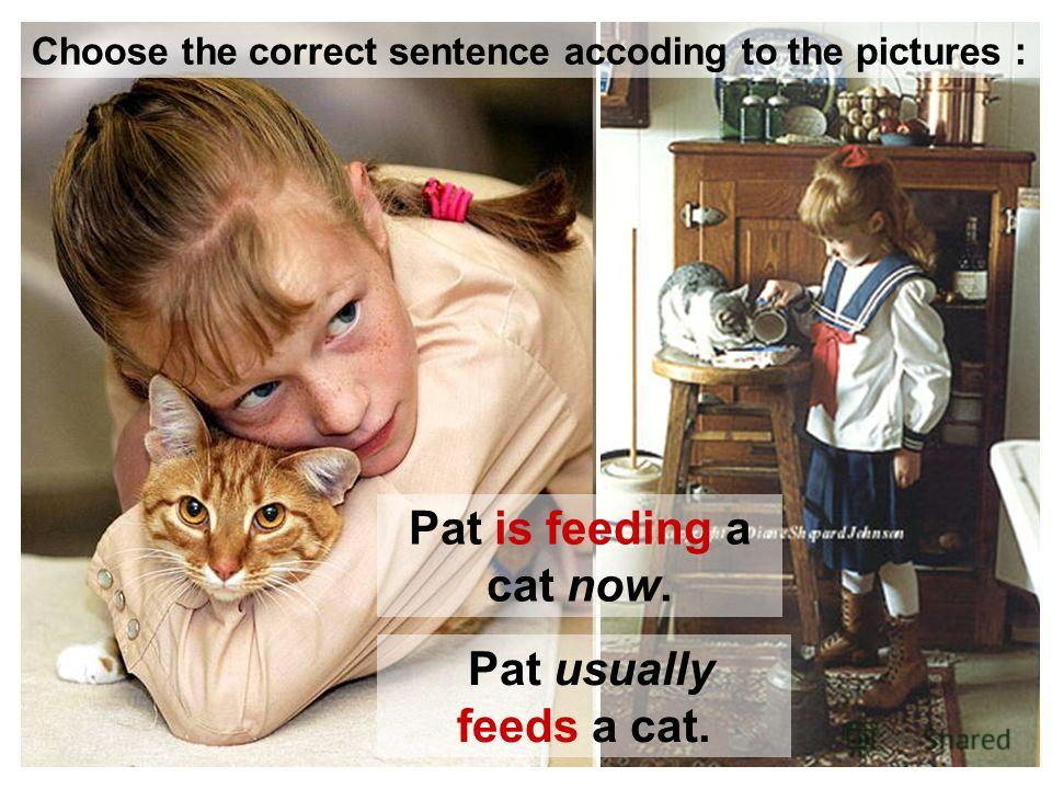 Pat is feeding a cat now. Pat usually feeds a cat. Choose the correct sentence accoding to the pictures :