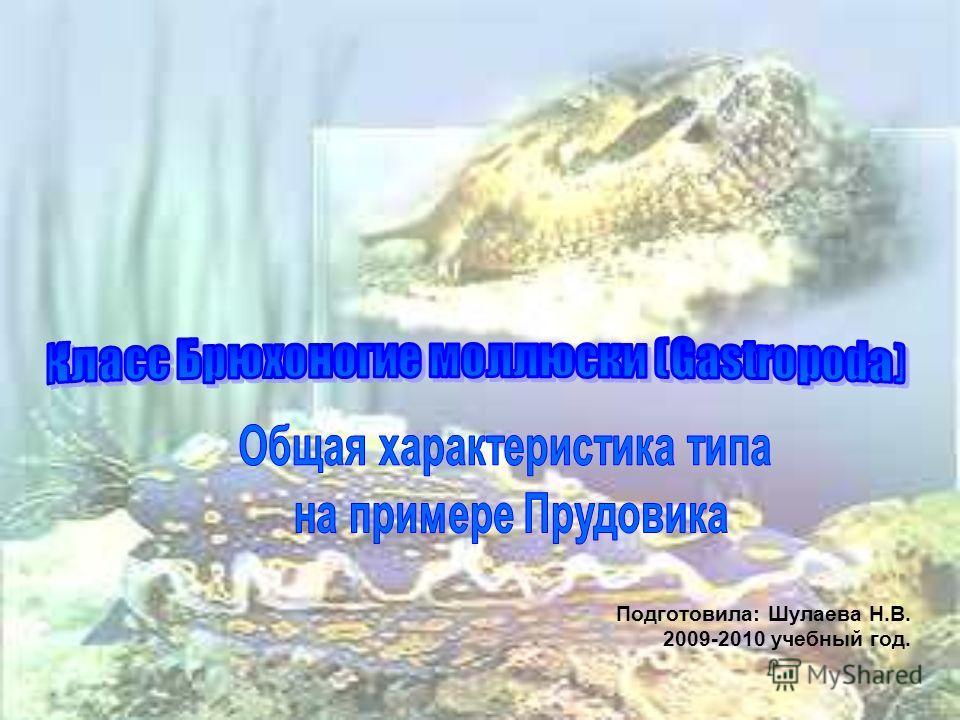 Подготовила: Шулаева Н.В. 2009-2010 учебный год.