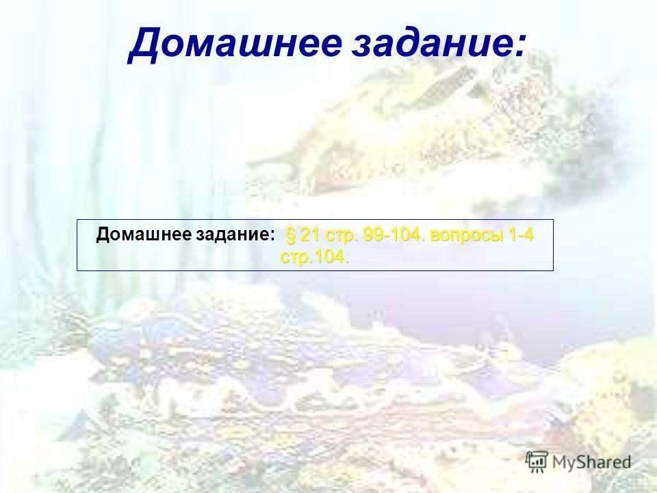 Домашнее задание: § 21 стр. 99-104. вопросы 1-4 стр.104. Домашнее задание: § 21 стр. 99-104. вопросы 1-4 стр.104.