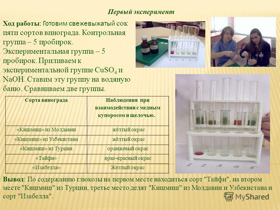 Первый эксперимент Сорта винограда Наблюдения при взаимодействии с медным купоросом и щелочью. «Кишмиш» из Молдавии жёлтый окрас «Кишмиш» из Узбекистана жёлтый окрас «Кишмиш» из Турции оранжевый окрас «Тайфи» ярко-красный окрас «Изабелла»Желтый окрас