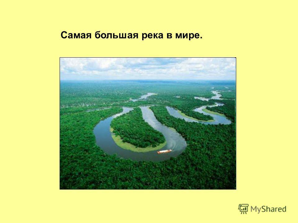Самая большая река в мире.