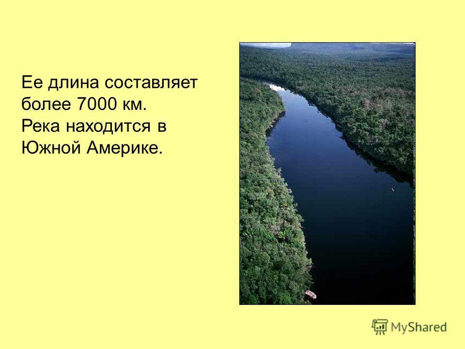 Ее длина составляет более 7000 км. Река находится в Южной Америке.