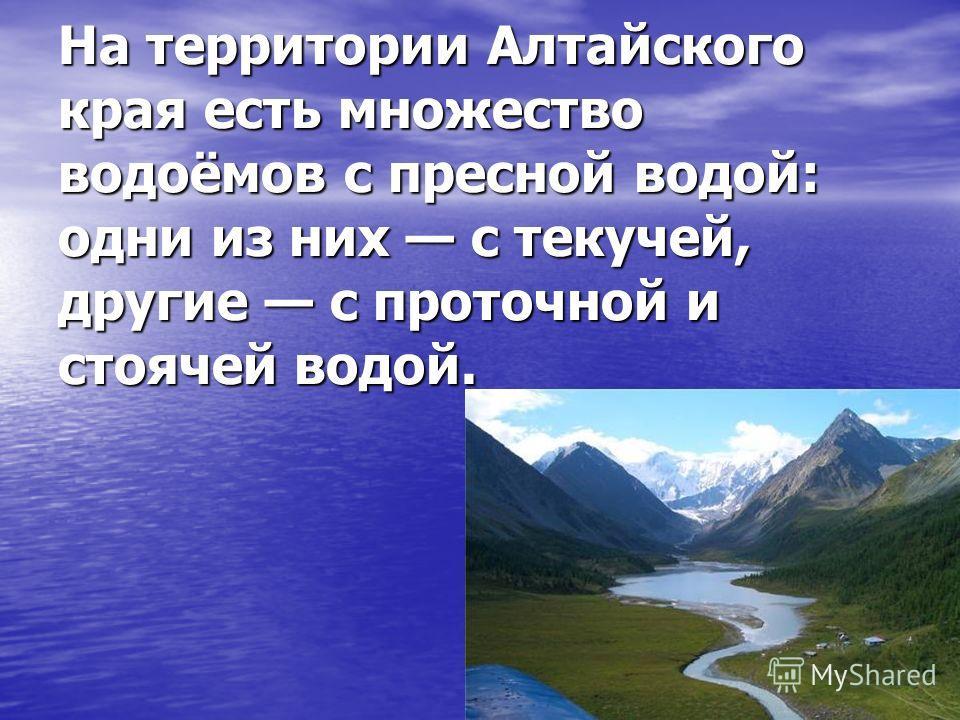 На территории Алтайского края есть множество водоёмов с пресной водой: одни из них с текучей, другие с проточной и стоячей водой.