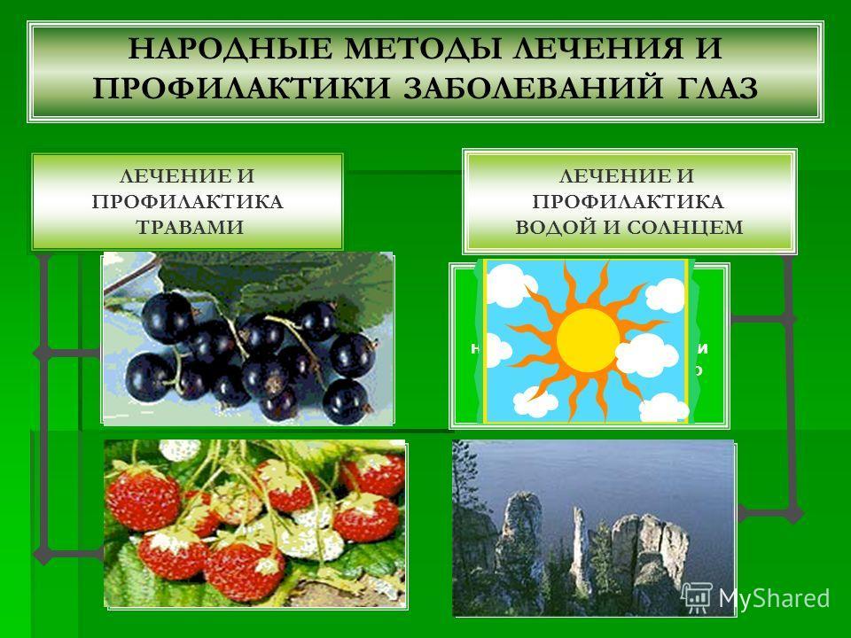 НАРОДНЫЕ МЕТОДЫ ЛЕЧЕНИЯ И ПРОФИЛАКТИКИ ЗАБОЛЕВАНИЙ ГЛАЗ ЛЕЧЕНИЕ И ПРОФИЛАКТИКА ТРАВАМИ Листья: 3-5 г сухих листьев на 1 стакан кипятка, заларивать 1020 минут, процедить; по 0,51 стакану 23 раза в день как чай. Листья и плоды: 20 г сухого измельченног