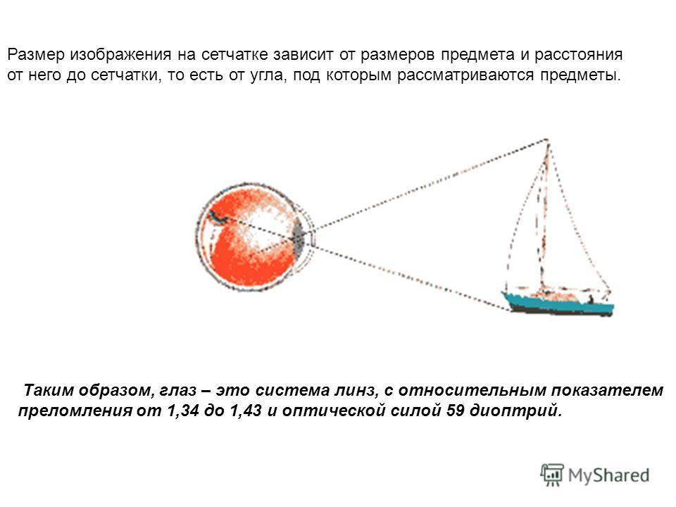 Таким образом, глаз – это система линз, с относительным показателем преломления от 1,34 до 1,43 и оптической силой 59 диоптрий. Размер изображения на сетчатке зависит от размеров предмета и расстояния от него до сетчатки, то есть от угла, под которым