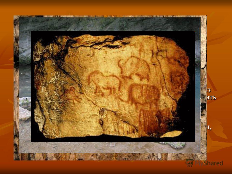 Капова пещера Расположена известная во всем мире пещера на правом берегу реки Белой в 4-х километрах ниже деревни Новоакбулатово Бурзянского района. Шульган-Таш протянулась более чем на два километра. Внутри протекает река Шульган. Здесь обнаружен са