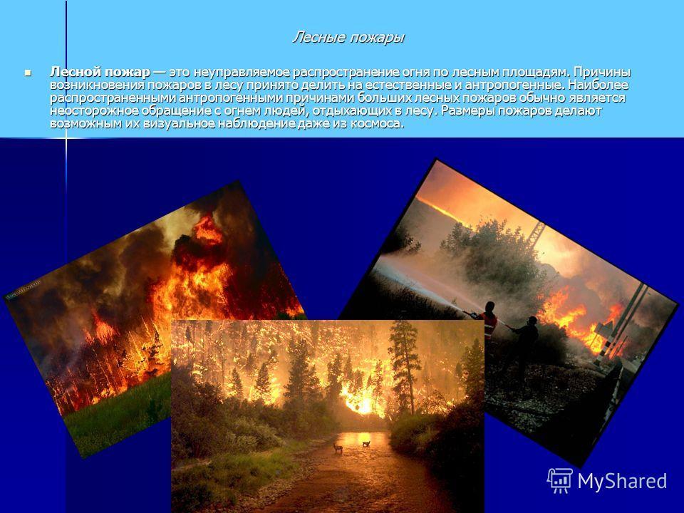 Лесной пожар это неуправляемое распространение огня по лесным площадям. Причины возникновения пожаров в лесу принято делить на естественные и антропогенные. Наиболее распространенными антропогенными причинами больших лесных пожаров обычно является не