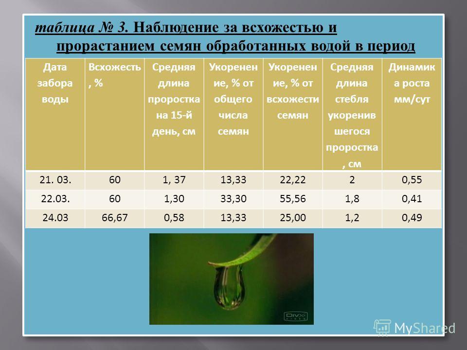 таблица 3. Наблюдение за всхожестью и прорастанием семян обработанных водой в период весеннего равноденствия 21.03 – 24. Дата забора воды Всхожесть, % Средняя длина проростка на 15-й день, см Укоренен ие, % от общего числа семян Укоренен ие, % от всх