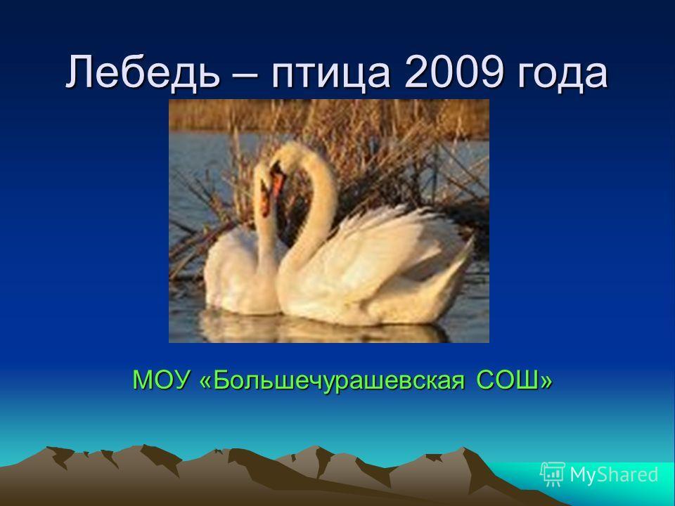 Лебедь – птица 2009 года МОУ «Большечурашевская СОШ»