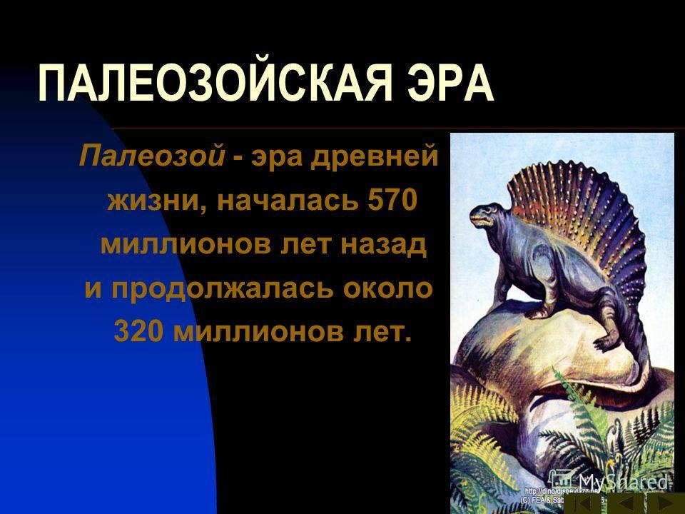 ПАЛЕОЗОЙСКАЯ ЭРА Палеозой - эра древней жизни, началась 570 миллионов лет назад и продолжалась около 320 миллионов лет.