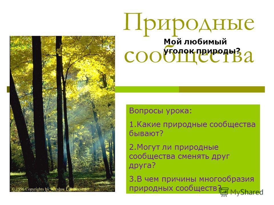 Природные сообщества Вопросы урока: 1.Какие природные сообщества бывают? 2.Могут ли природные сообщества сменять друг друга? 3.В чем причины многообразия природных сообществ? Мой любимый уголок природы?