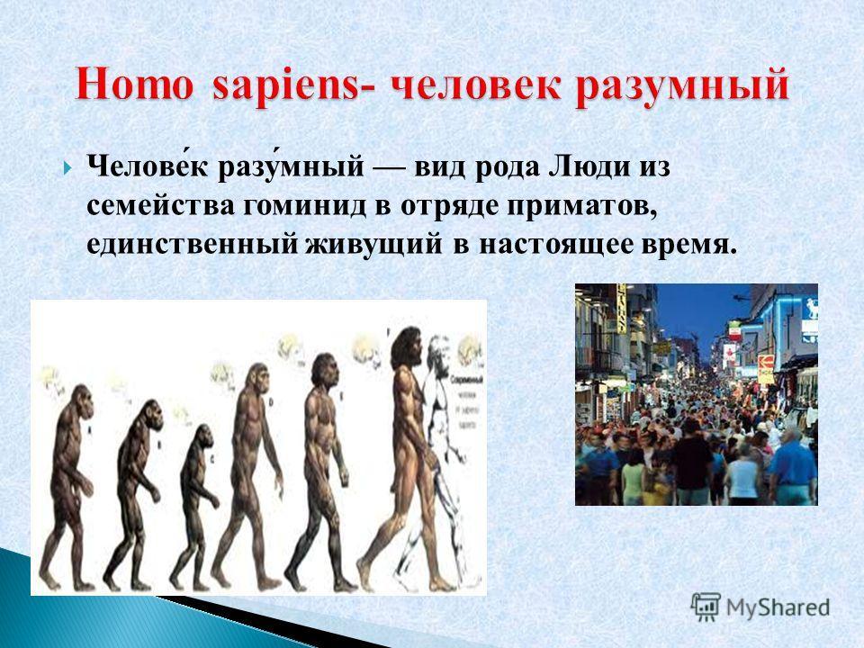 Челове́к разу́мный вид рода Люди из семейства гоминид в отряде приматов, единственный живущий в настоящее время.