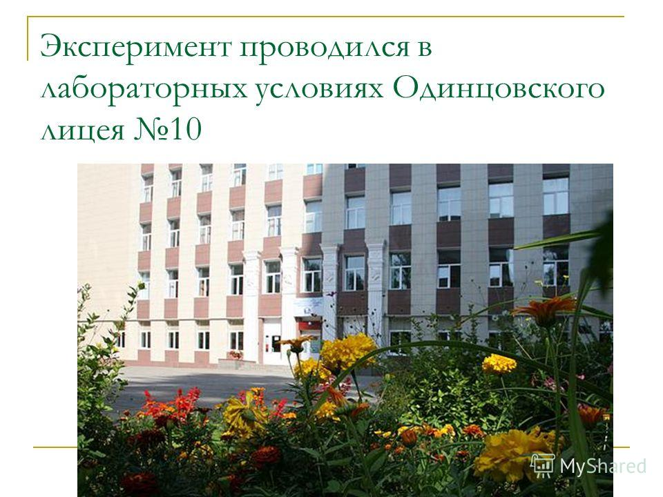 Эксперимент проводился в лабораторных условиях Одинцовского лицея 10