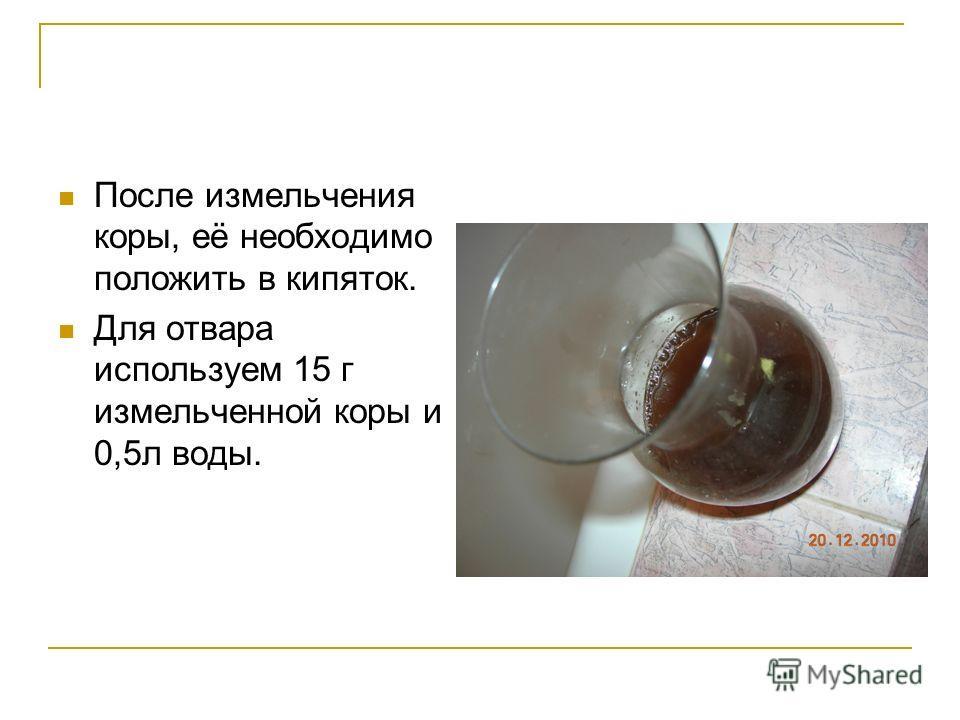 После измельчения коры, её необходимо положить в кипяток. Для отвара используем 15 г измельченной коры и 0,5л воды.