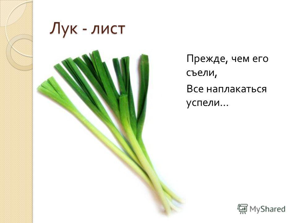Лук - лист Прежде, чем его съели, Все наплакаться успели …