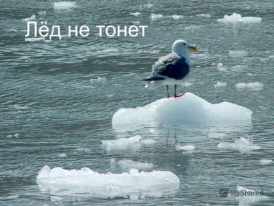 Лёд не тонет