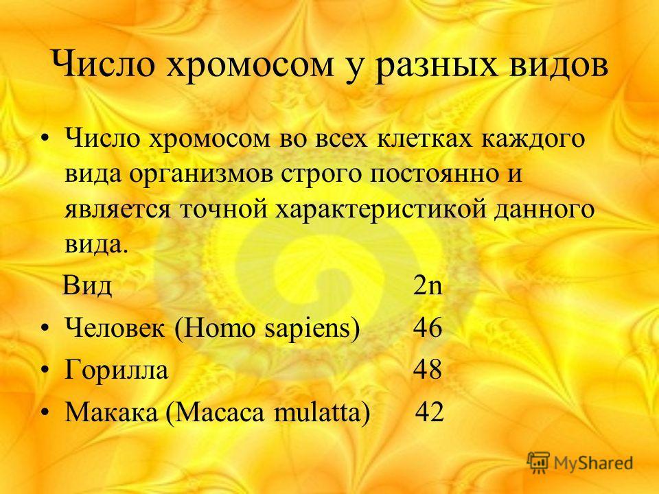 Число хромосом у разных видов Число хромосом во всех клетках каждого вида организмов строго постоянно и является точной характеристикой данного вида. Вид 2n Человек (Homo sapiens) 46 Горилла 48 Макака (Macaca mulatta) 42