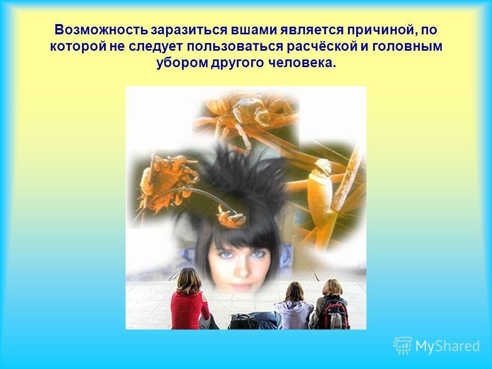 Возможность заразиться вшами является причиной, по которой не следует пользоваться расчёской и головным убором другого человека.