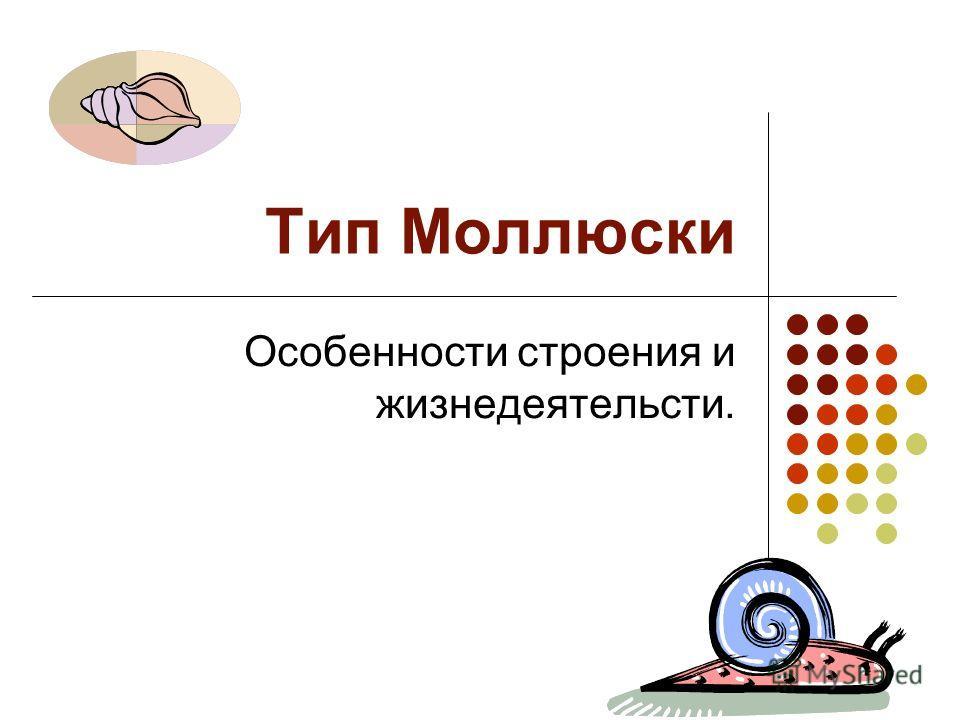 Тип Моллюски Особенности строения и жизнедеятельсти.