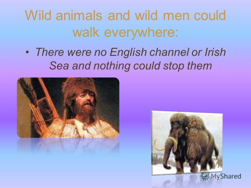 Wild animals and wild men could walk everywhere: There were no English channel or Irish Sea and nothing could stop them