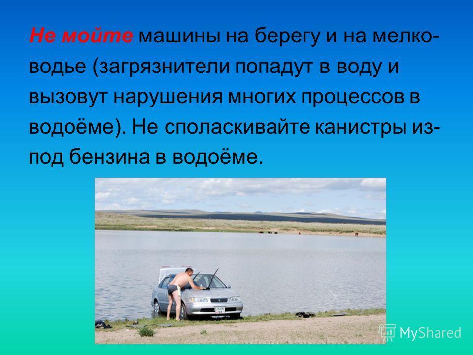 Не мойте машины на берегу и на мелко- водье (загрязнители попадут в воду и вызовут нарушения многих процессов в водоёме). Не споласкивайте канистры из- под бензина в водоёме.