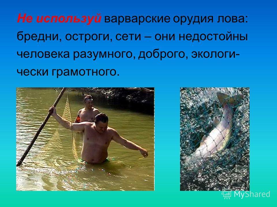 Не используй варварские орудия лова: бредни, остроги, сети – они недостойны человека разумного, доброго, экологи- чески грамотного.