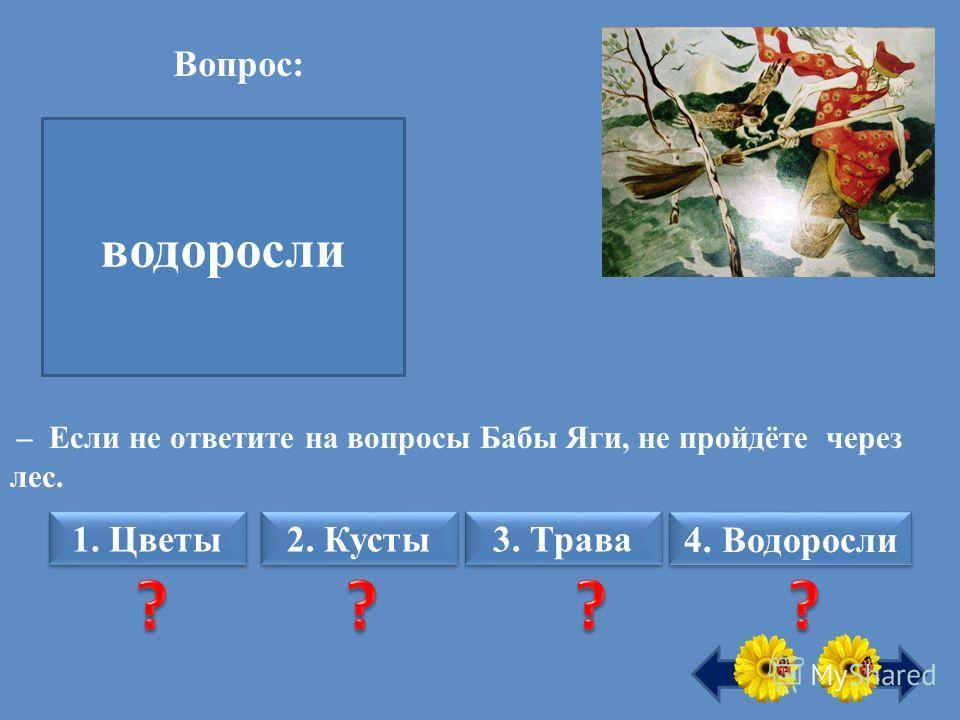 - Какие растения первыми появились на Земле? водоросли – Если не ответите на вопросы Бабы Яги, не пройдёте через лес. Вопрос: 1. Цветы 2. Кусты 3. Трава 4. Водоросли