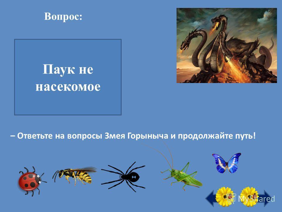 Вопрос: – Ответьте на вопросы Змея Горыныча и продолжайте путь! Все ли здесь насекомые? Паук не насекомое