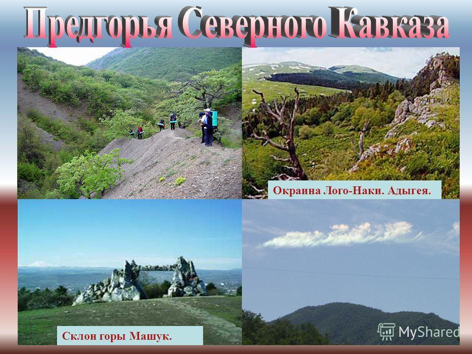 Равнинная (степная) зона Северного Кавказа занимает большую часть территории и простирается от реки Дон до долин рек Кубань и Терек. КубаньТерек на равнине Кумо-Маныческая впадина. Ширина 20 - 30 км, в центральной части суживается до 1 - 2 км. Кумо-М