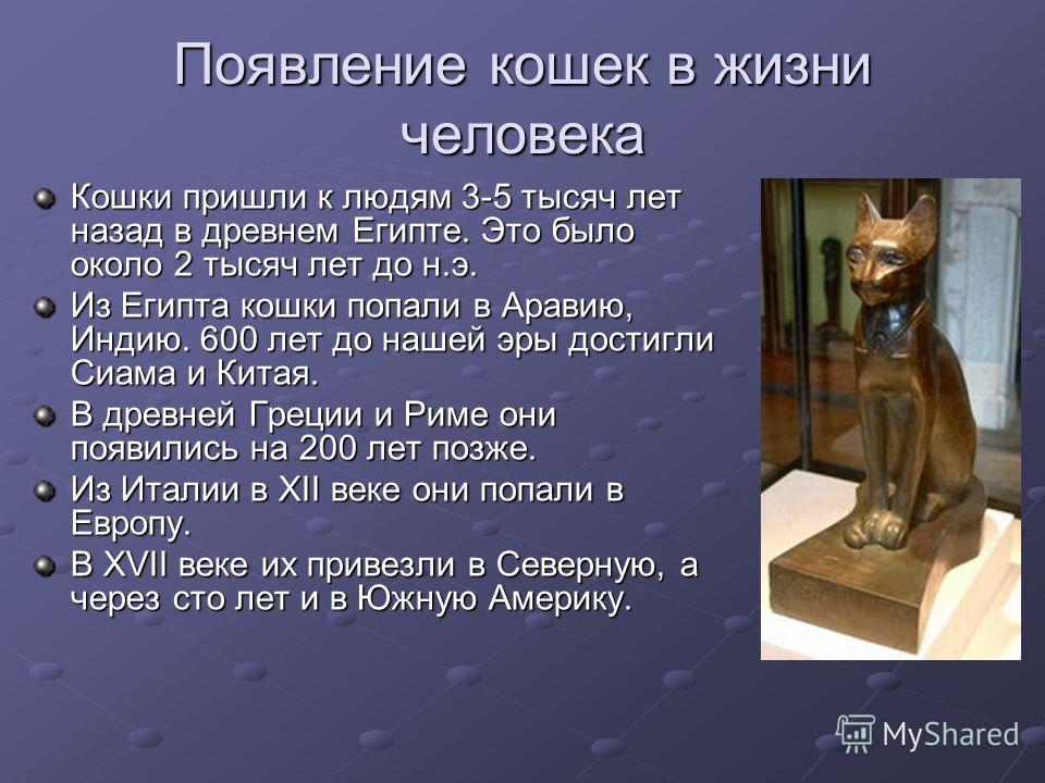 Появление кошек в жизни человека Кошки пришли к людям 3-5 тысяч лет назад в древнем Египте. Это было около 2 тысяч лет до н.э. Из Египта кошки попали в Аравию, Индию. 600 лет до нашей эры достигли Сиама и Китая. В древней Греции и Риме они появились