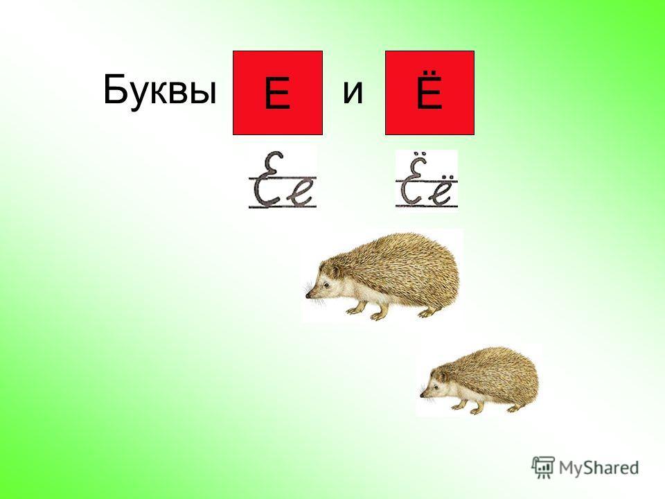 Буквы и ЕЁ